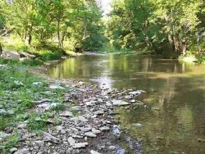 Gainesboro Single Family Home For Sale: 2300 Blackburn Fork