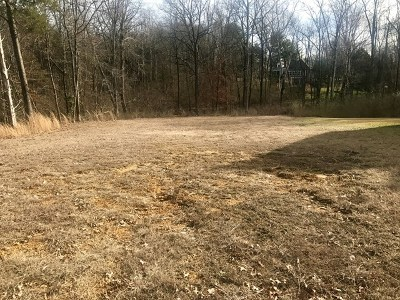 Cookeville Residential Lots & Land For Sale: 732 Langford Lane