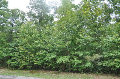 Residential Lots & Land For Sale: Lot 26 The Hollow