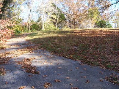 Cookeville Residential Lots & Land For Sale: 1370 Charles Street