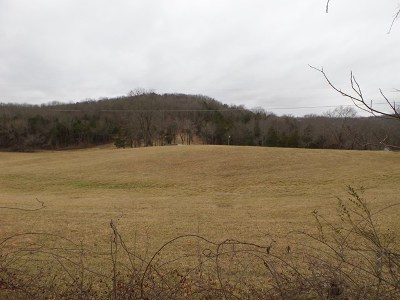 Residential Lots & Land For Sale: 37.9 Ac Charles Golden Road