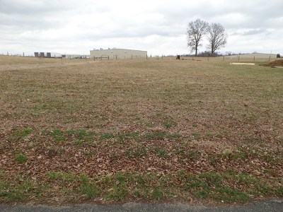 Residential Lots & Land For Sale: 456 Ray Cemetery Road