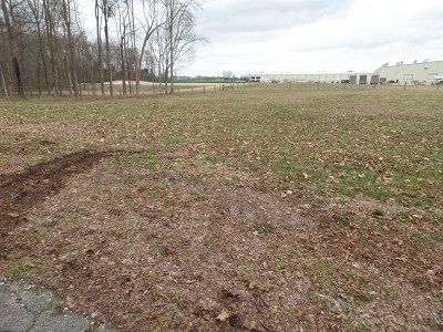 Residential Lots & Land For Sale: 496 Ray Cemetery Road