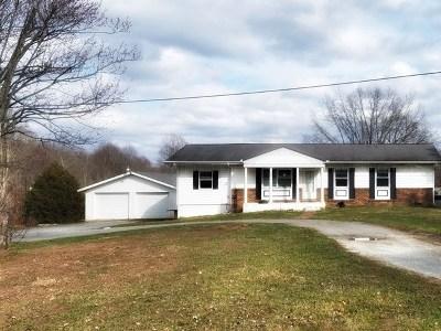 Gainesboro Single Family Home For Sale: 160 Martin Ridge Lane