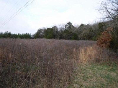 Granville Residential Lots & Land For Sale: 10.16 Holleman Bend Lane