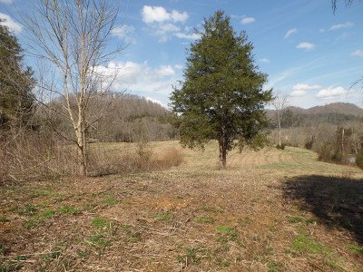 Residential Lots & Land For Sale: 00 Blackburn Fork Road