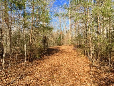 Gainesboro Residential Lots & Land For Sale: 00 65.62 Acres Seven Knobs Road