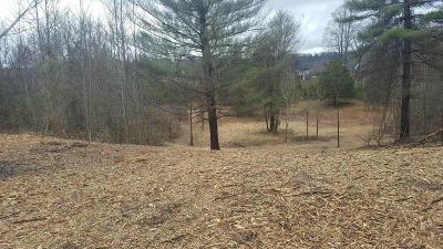 Putnam County Residential Lots & Land For Sale: 5 Ac Vista Circle