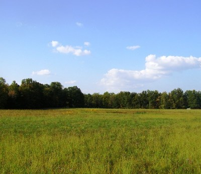 Putnam County Residential Lots & Land For Sale: 8+ Acres Stamps Shady Grove/Thorn Gap