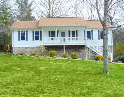 Putnam County Single Family Home For Sale: 115 Breen Lane