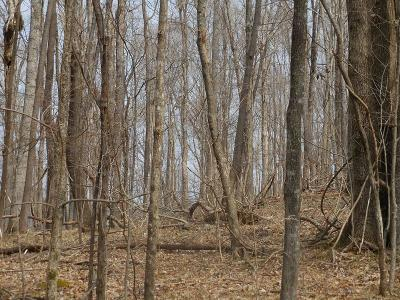 Putnam County Residential Lots & Land For Sale: 8.14 Ac Cherokee Drive