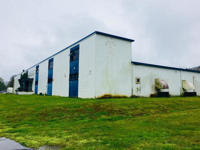 Gainesboro Commercial For Sale: 615 Murray St