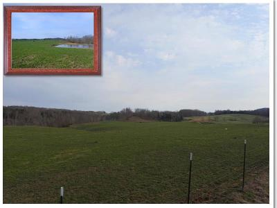 Allons, Celina, Hilham, Moss, Whitleyville Residential Lots & Land For Sale: 40.00 Ac Pleasant Hill Road