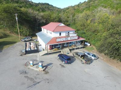 Gainesboro Commercial For Sale: 164 Dow Cook Rd