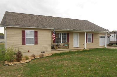SPARTA Single Family Home For Sale: 217 Guylene Drive