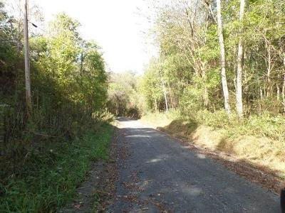 Residential Lots & Land For Sale: 39.11ac Lambert Hollow Lane