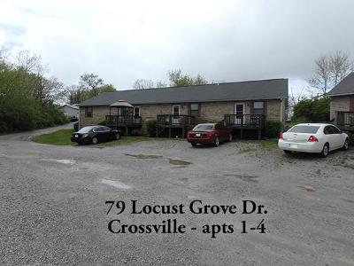 Crossville Single Family Home For Sale: 69 Locust Grove Dr