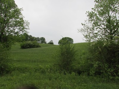 Cookeville TN Residential Lots & Land For Sale: $30,800
