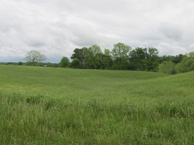 Cookeville Residential Lots & Land For Sale: 625 Blue Water Dr