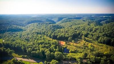 Gainesboro Residential Lots & Land For Sale: 00 York Highway