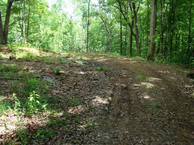 Cookeville Residential Lots & Land For Sale: 141 Jeremiah Rd