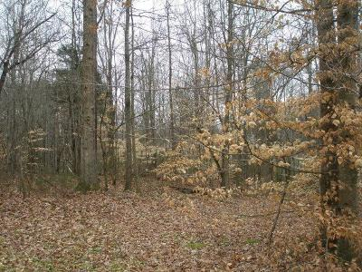 Cookeville Residential Lots & Land For Sale: Lot 33 Old Sparta Road