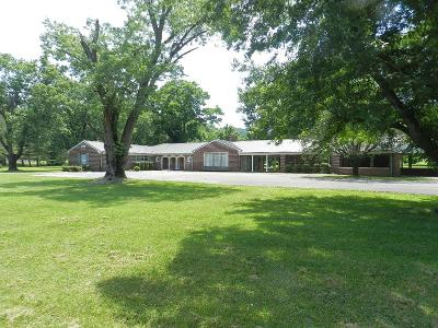 Gainesboro Single Family Home For Sale: 603 Murray Street