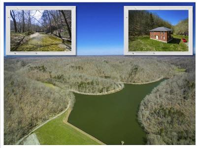 Bloomington Springs, Cookeville, Gainesboro, Granville, Hilham, Whitleyville Single Family Home For Sale: 897 Crabtree Creek Road