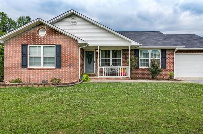 Gainesboro Single Family Home For Sale: 161 Hailey Ridge Lane