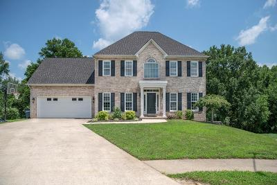 Cookeville Single Family Home For Sale: 1120 Sugartree Pt.
