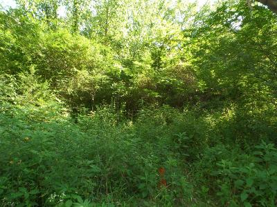 Residential Lots & Land For Sale: 769 New Salem Road
