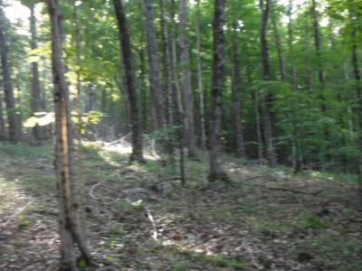Cookeville TN Residential Lots & Land For Sale: $34,900