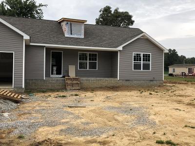 Baxter Single Family Home For Sale: 175 Chestnut Street