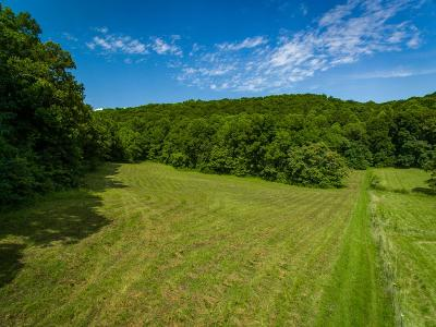 Residential Lots & Land For Sale: 22.87 Ac Golden Mountain Road