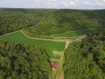 Bloomington Springs, Cookeville, Gainesboro, Granville, Hilham, Whitleyville Residential Lots & Land For Sale: 125 Ac Pine Lick Rd