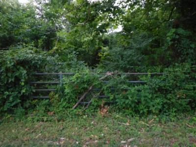 Putnam County Residential Lots & Land For Sale: 6.04ac Falling Water Road