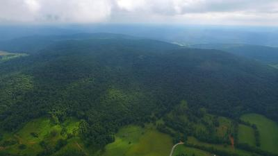 Putnam County Residential Lots & Land For Sale: 612 Ac Long Hollow Rd