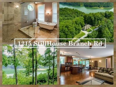 Sparta Single Family Home For Sale: 1215 Stillhouse Branch Road