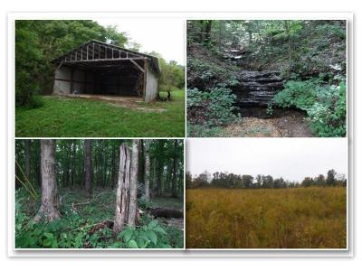 Bloomington Springs, Cookeville, Gainesboro, Granville, Hilham, Whitleyville Residential Lots & Land For Sale: 1309 Hunting Creek Road