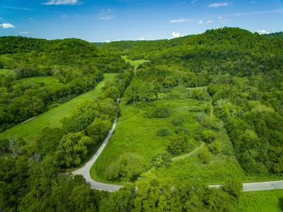 Residential Lots & Land For Sale: 3541 Big Bottom Road