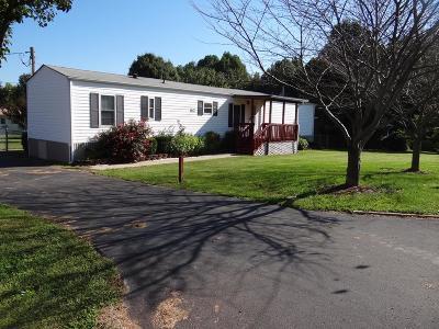 Gainesboro Single Family Home For Sale: 123 Martin Ln