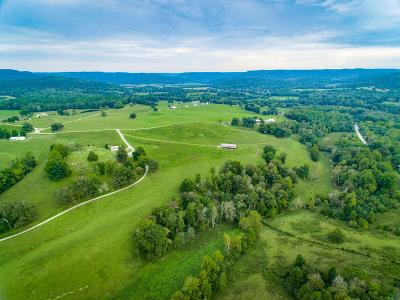 Residential Lots & Land For Sale: 162 Ac Wolf River Loop