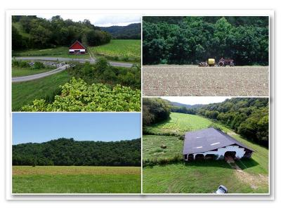 Bloomington Springs, Cookeville, Gainesboro, Granville, Hilham, Whitleyville Residential Lots & Land For Sale: 193.37ac South Fork Rd
