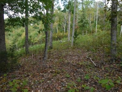 Allons Residential Lots & Land For Sale: 1.54ac Mitchell Creek Pointe