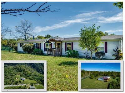Gainesboro Single Family Home For Sale: 1219 Booger Ridge Lane
