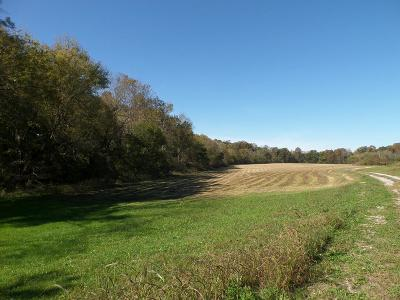 Residential Lots & Land For Sale: 26 Ac East Of Highway 42
