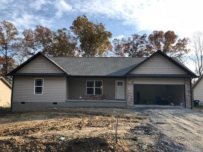 Crossville Single Family Home For Sale: 4026 Chica Rd