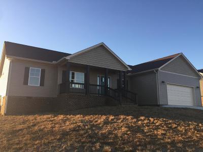 Cookeville Single Family Home For Sale: 4770 Ellen Circle