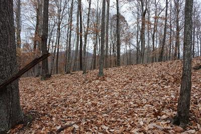 Allons Residential Lots & Land For Sale: Lot 12 Cornerstone Pkwy