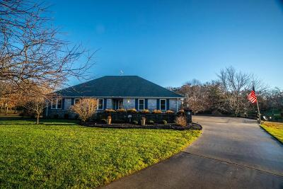 Crossville Single Family Home For Sale: 34 Turtle Point